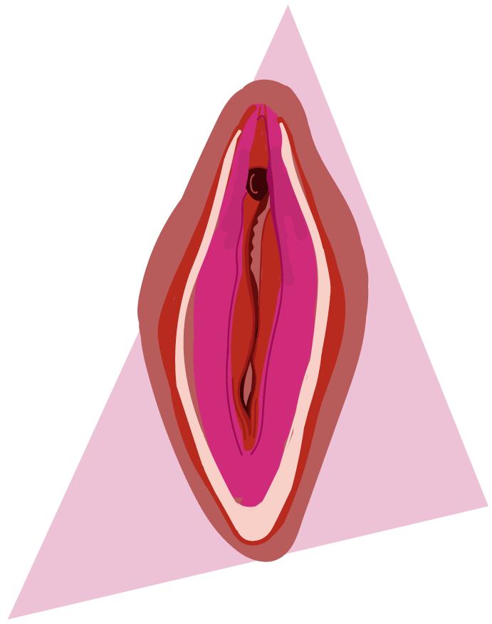 tipos de vulva vergonzosa